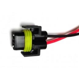 Plug H8, H9, H11