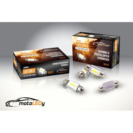 LED SV8.5 12V COB CANBUS 36mm