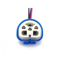Plug HB1, HB5, 9004, 9007