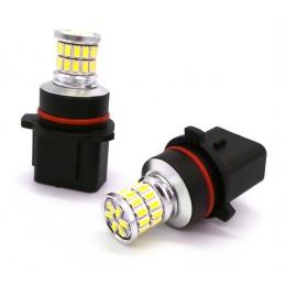 LED P13W 12-24V CANBUS 500lm